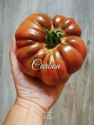 52-carbon0