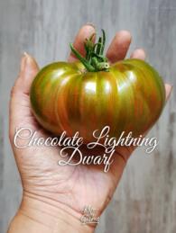 54-chocolate-lightning0