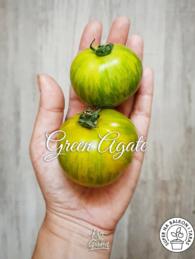 60-green-agate0