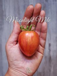 63-moonlight-mile0