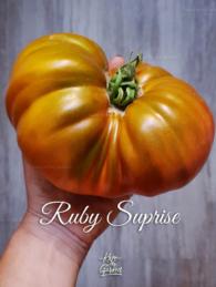 67-ruby-suprise0