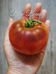 77-blue-beauty0
