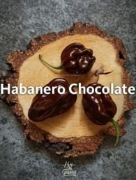 habanero-chocolate